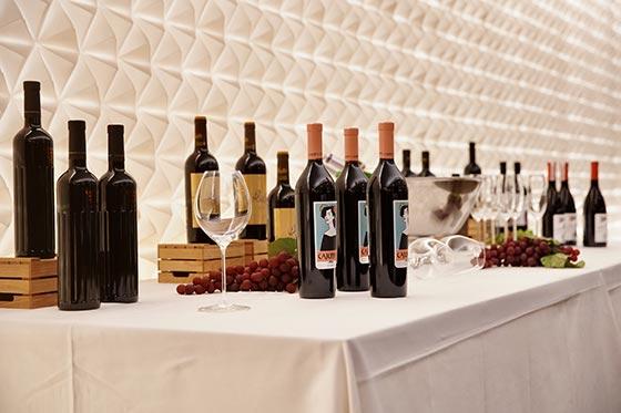 Tecnovino feria Gastronoma 2019 vinos 2