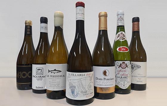 Tecnovino vinos elaborados con albarino Albarinos al Mundo 2019