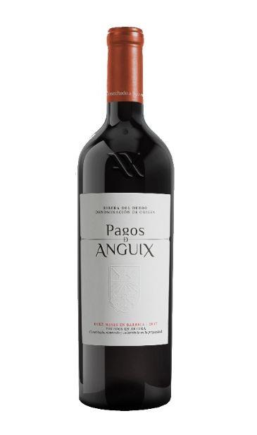 Tecnovino Pagos de Anguix