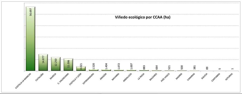 Tecnovino vinedo de produccion ecologica CCAA