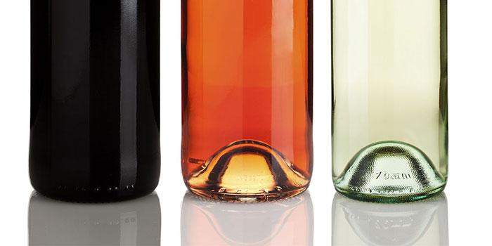 Tecnovino DO Bierzo botellas vino