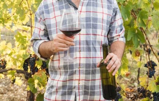 Tecnovino DO Vinos de Gran Canaria