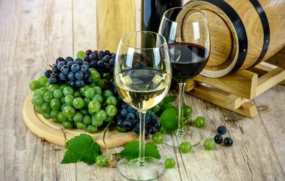 Tecnovino Premio Alimentos de Espana al Mejor Vino 2020