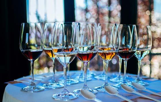 Tecnovino XI Salón Internacional Vinoble