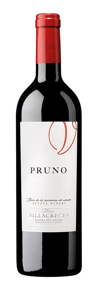 Tecnovino vino Pruno 2018 botella