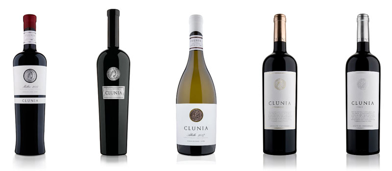 Tecnovino vinos de Clunia