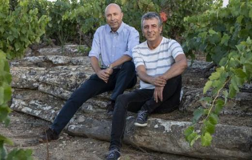 Tecnovino Rioja Vinos Silenciosos