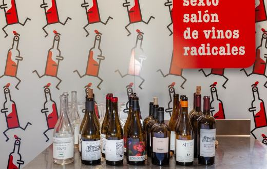 Tecnovino vinos radicales