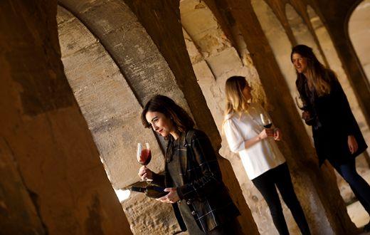 Tecnovino enoturismo en La Rioja