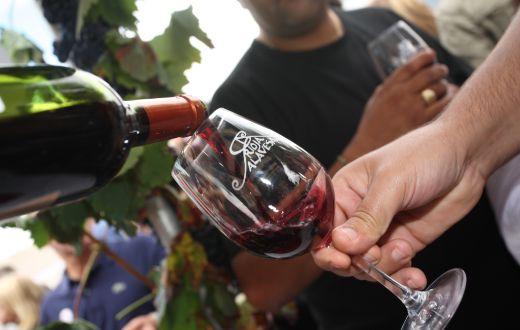 Tecnovino Ruta del Vino de Rioja Alavesa