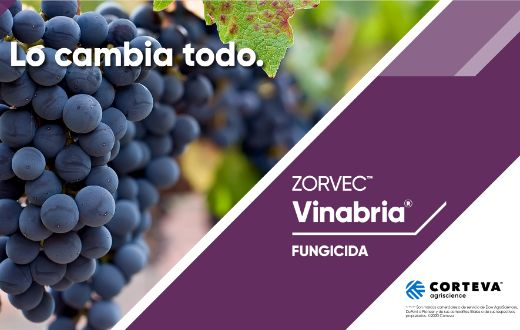 Tecnovino Zorvec Vinabria antimildiu