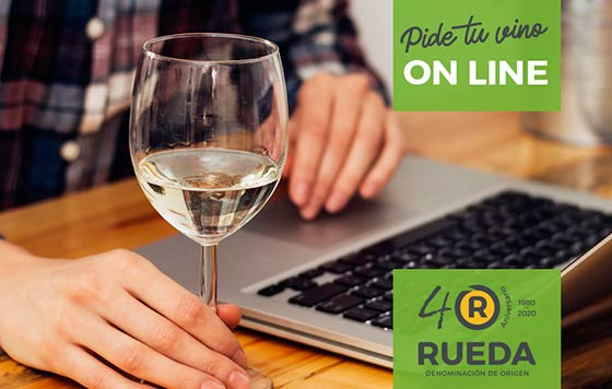 Tecnovino DO Rueda venta de vino online