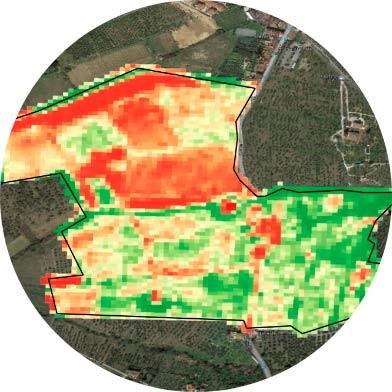 Tecnovino Elaisian agricultura de precision en el vinedo 3