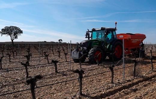 Tecnovino Longverdejo longevidad vinos blancos de la variedad verdejo