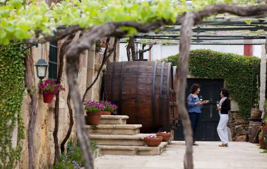 Tecnovino Rutas del Vino de Espana