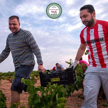 Tecnovino enólogos sostenibles Vinventions Angel Garage Wine 1