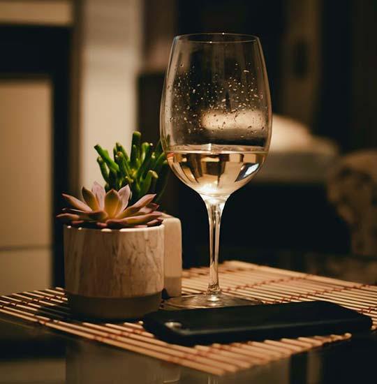 Tecnovino ventas online de vino Vinissimus vino blanco