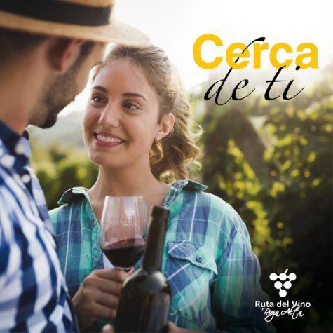 Tecnovino Ruta del Vino Rioja Alta