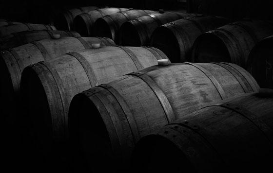 Tecnovino bodegas españolas FEV sector vitivinícola