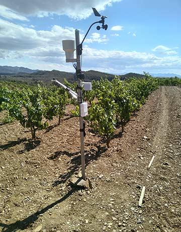 Tecnovino producción vitivinícola sostenible Life Priorat Montsant Estación Meteo Mas den Gil