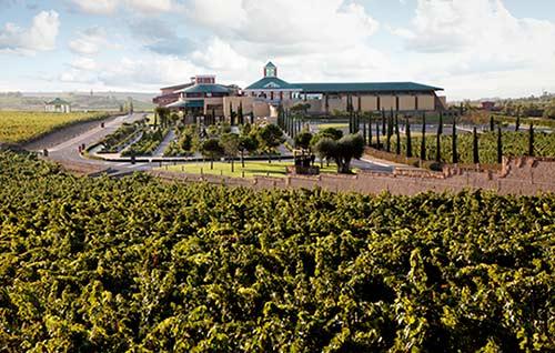 Tecnovino Bodega y Museo Vivanco