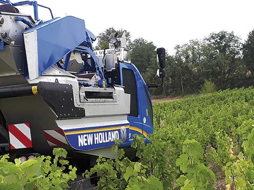 Tecnovino Combi Grape despalillado vendimiadoras Braud New Holland