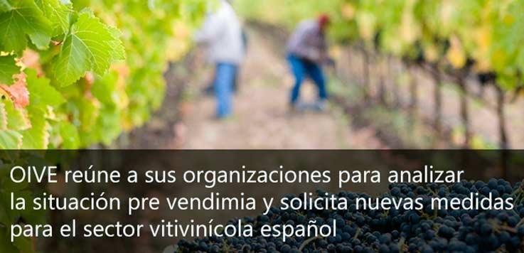 Tecnovino medidas para el sector vitivinícola espanol