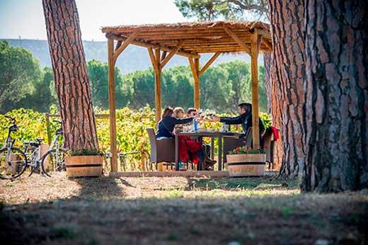 Tecnovino Finca Villacreces experiencia picnic