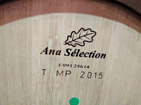 Tecnovino barricas de roble envejecimiento vinos UPM