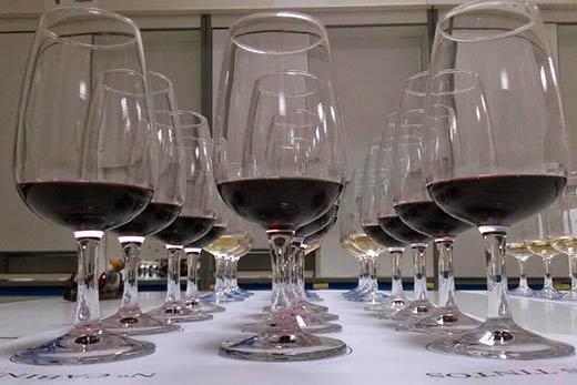 Tecnovino deshojado precoz en la vid tempranillo vinos