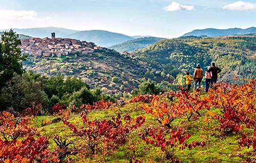 Tecnovino enoturismo en las Rutas del Vino Sierra de Francia vinedos y Miranda del Castañar