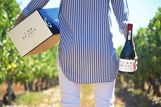 Tecnovino graciano de Rioja Vega Con Gracia