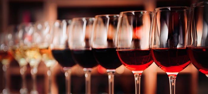 Tecnovino vinos en tinajas de barro Govalmavin 2