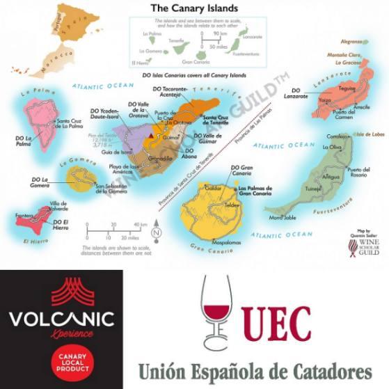 Tecnovino Curso Experto en Vinos Canarios
