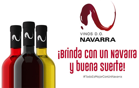 Tecnovino DO Navarra vinos campaña detalle
