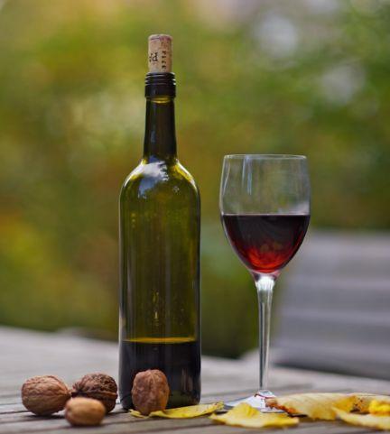 Tecnovino vinos perfectos para otoño Vinissimus