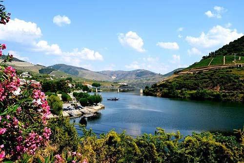 Tecnovino experiencias del mundo del vino TripAdvisor Valle del Duero