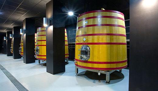 Tecnovino recipientes de madera para vino Tonnellerie Allary 2