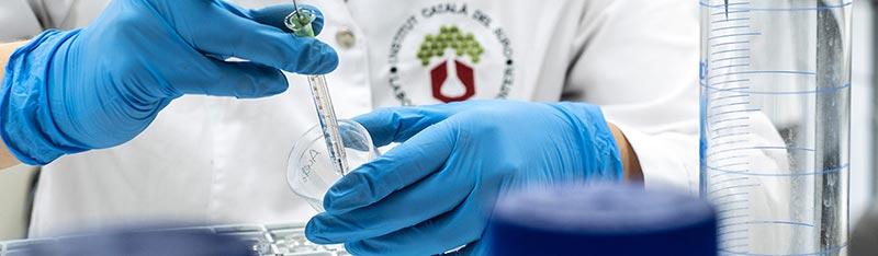 Tecnovino laboratorio ICSURO