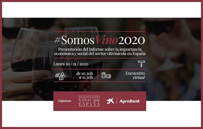 Tecnovino sector vitivinícola en España informe OIVE detalle