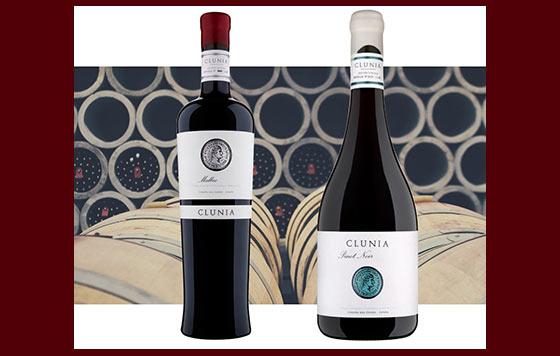 Tecnovino Clunia Malbec y Pinot Noir detalle