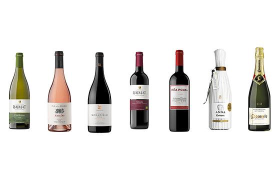 Tecnovino vino cava Raventos Codorniu detalle