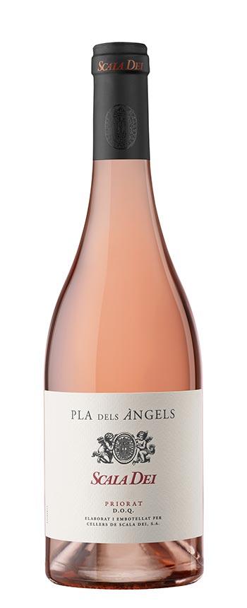 Tecnovino vino cava Scala Dei rose