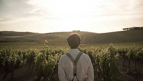 Tecnovino vinos de Jerez el verano que vivimos 1