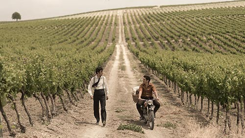 Tecnovino vinos de Jerez el verano que vivimos 2