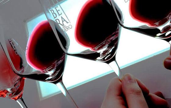 Tecnovino DO Ribera del Duero vinos