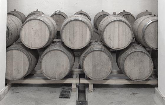 Tecnovino branding y comunicacion del mundo del vino detalle