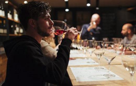 Tecnovino Formador Oficial en Vinos de Rioja DOCa Rioja detalle