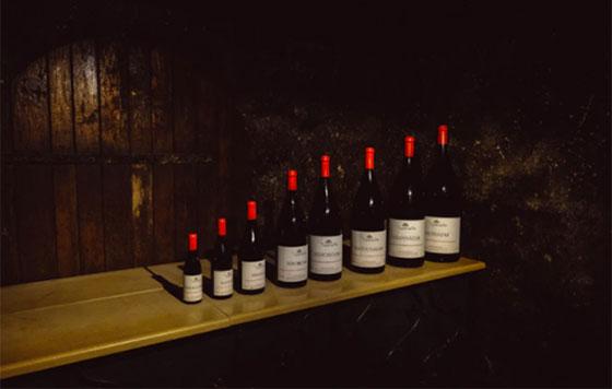 Tecnovino planes para amantes del vino OIVE 3