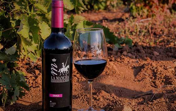 Tecnovino ventas de vino con DO La Mancha detalle